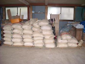 脱穀した米ですよ